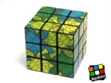 3x3x3 Picture Cube (Turtle)